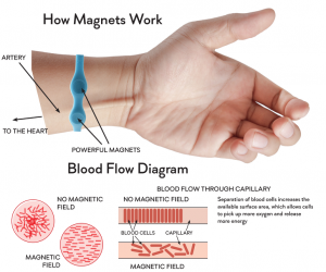 How magnetic therapy works - blood flow diagram - Ship Shop Style