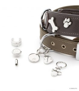 Magnetic therapy pet pendant for collars